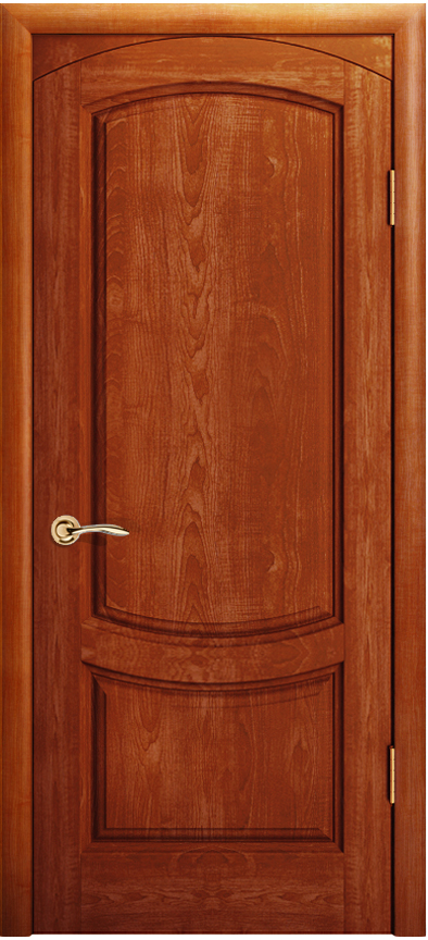 Двери металлические магнолия